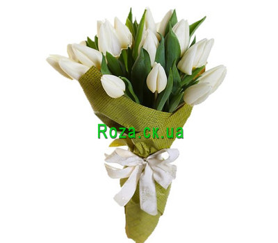 """""""Bouquet of 19 White Tulips"""" in the online flower shop roza.ck.ua"""