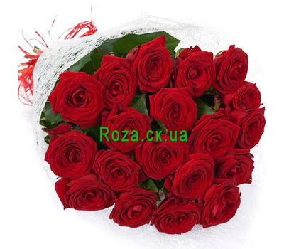 """Bouquet of 19 red roses"" in the online flower shop roza.ck.ua"