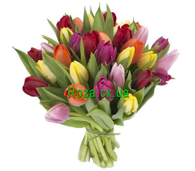 """Bouquet of multicolored tulips"" in the online flower shop roza.ck.ua"