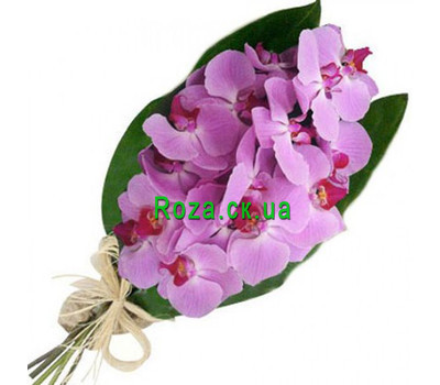 """Bouquet of pink orchids"" in the online flower shop roza.ck.ua"