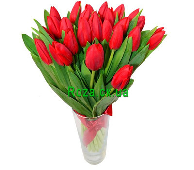 """Bouquet of red tulips"" in the online flower shop roza.ck.ua"