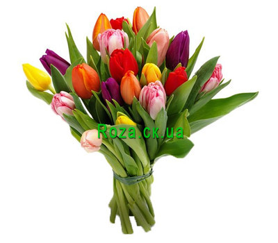 """Bouquet of Tulips"" in the online flower shop roza.ck.ua"