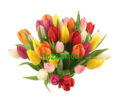 """Bouquet of bright tulips"" in the online flower shop roza.ck.ua"