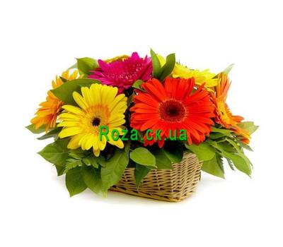 """Basket of gerberas"" in the online flower shop roza.ck.ua"
