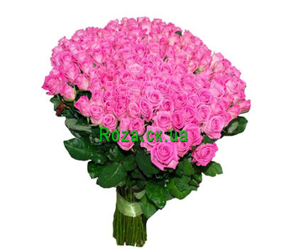 """Buy 251 roses from Cherkassy"" in the online flower shop roza.ck.ua"