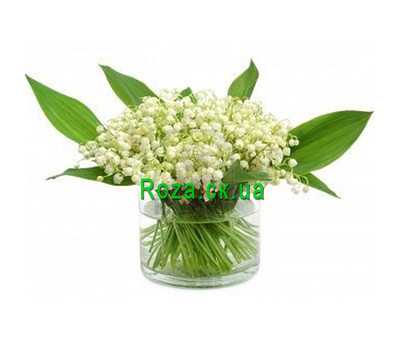 """Buy lilies of the valley in Cherkassy"" in the online flower shop roza.ck.ua"