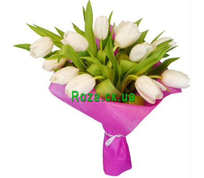 """Inexpensive bouquet of white tulips"" in the online flower shop roza.ck.ua"