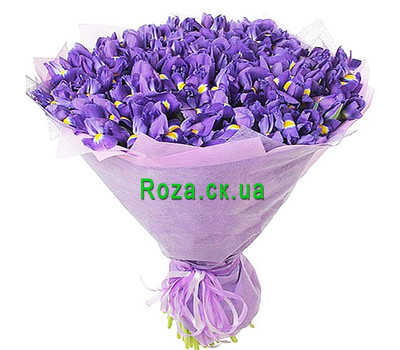 """A huge bouquet of irises"" in the online flower shop roza.ck.ua"
