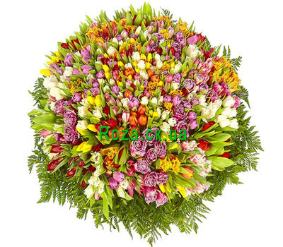 """A huge bouquet of tulips"" in the online flower shop roza.ck.ua"