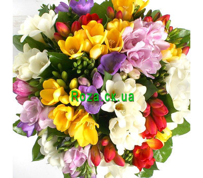 """An attractive bouquet of freesias"" in the online flower shop roza.ck.ua"