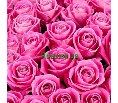 """Pink roses (by the piece)"" in the online flower shop roza.ck.ua"