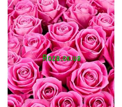"""""""Розовые розы (поштучно)"""" в интернет-магазине цветов roza.ck.ua"""