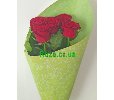 """5 red roses - 1"" in the online flower shop roza.ck.ua"