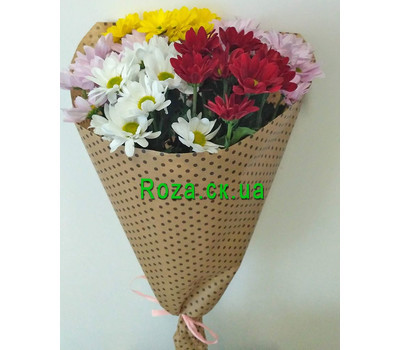 """Bouquet of chrysanthemums Cherkasy 1"" in the online flower shop roza.ck.ua"