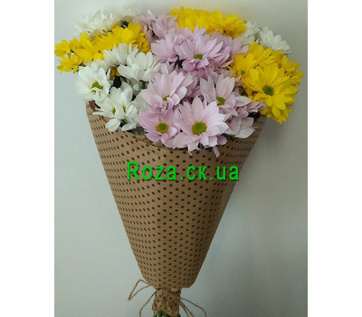"""Buy chrysanthemums in Cherkassy 1"" in the online flower shop roza.ck.ua"