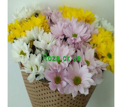 """Buy chrysanthemums in Cherkassy 2"" in the online flower shop roza.ck.ua"