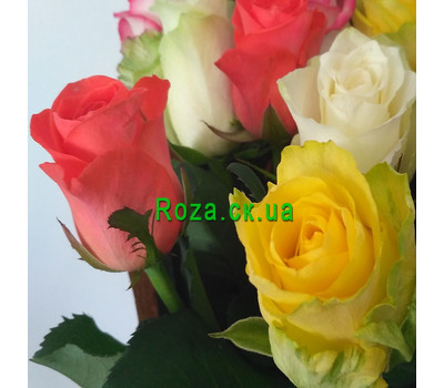 """Magnificent bouquet of roses 7"" in the online flower shop roza.ck.ua"