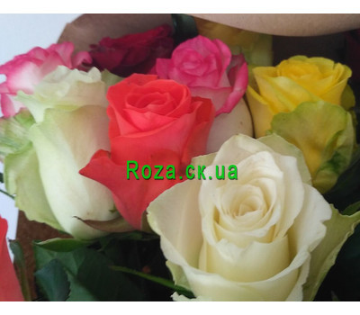 """Magnificent bouquet of roses 8"" in the online flower shop roza.ck.ua"