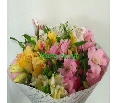 """15 alstroemeria 2"" in the online flower shop roza.ck.ua"