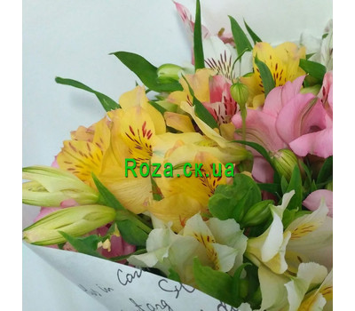 """15 alstroemeria 3"" in the online flower shop roza.ck.ua"