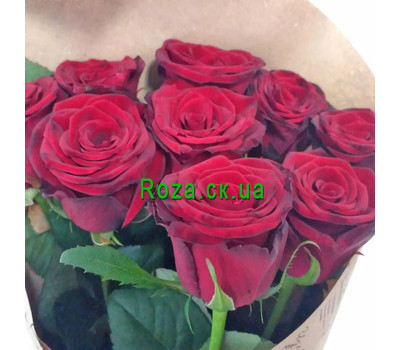"""Bouquet of red roses in a paper 3"" in the online flower shop roza.ck.ua"