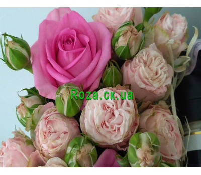 """Flowers with Sheridan's liqueur 2"" in the online flower shop roza.ck.ua"