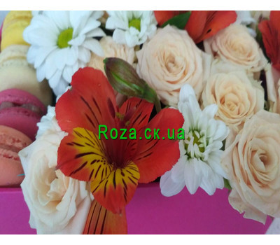 """Delicate Flowers and Macarons 4"" in the online flower shop roza.ck.ua"
