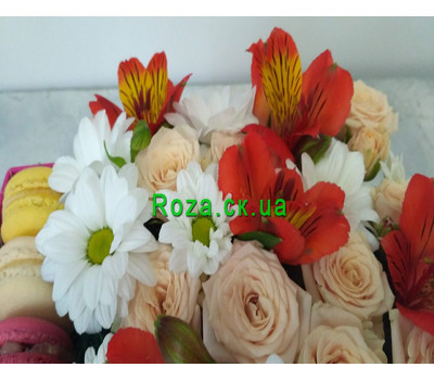 """Delicate Flowers and Macarons 5"" in the online flower shop roza.ck.ua"