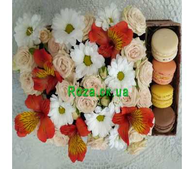 """Delicate Flowers and Macarons 7"" in the online flower shop roza.ck.ua"
