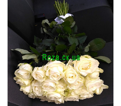 """A gorgeous bouquet of 21 white roses 1"" in the online flower shop roza.ck.ua"