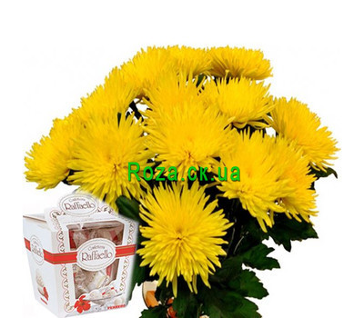 """Bouquet of chrysanthemums and rafaello"" in the online flower shop roza.ck.ua"