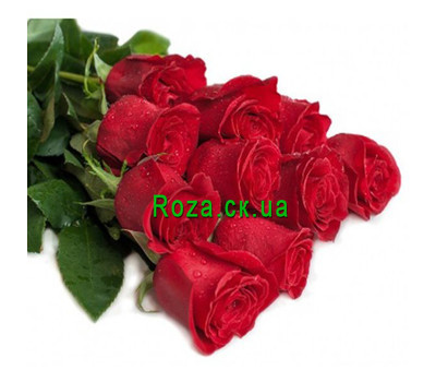 """11 meter long roses"" in the online flower shop roza.ck.ua"