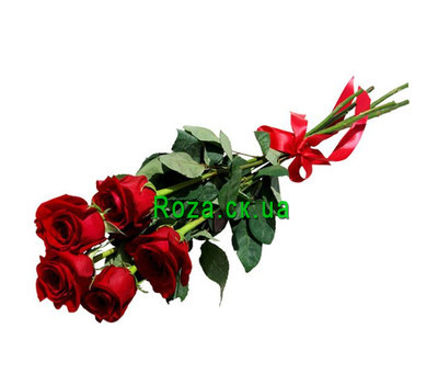 """5 red roses"" in the online flower shop roza.ck.ua"