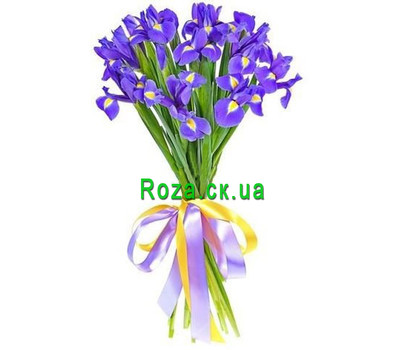 """Bouquet of 15 irises"" in the online flower shop roza.ck.ua"