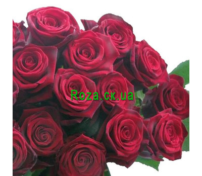 """Red roses per piece"" in the online flower shop roza.ck.ua"